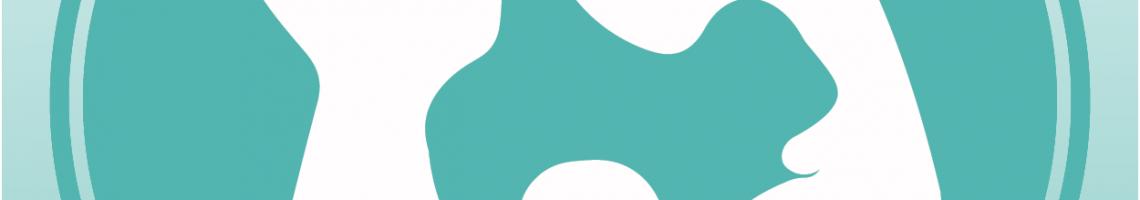 _Logo Grup de Treball FEM_CAT